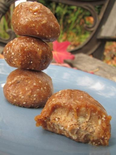 Raw Almond Coconut Energy Balls + Hunger = Snacks for Stamina | the veg bar