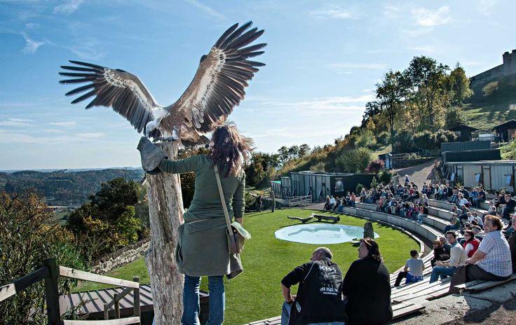 Riegersburg -Tourismus - URLAUB & GENUSS in der Oststeiermark - Österreich - rund um Graz