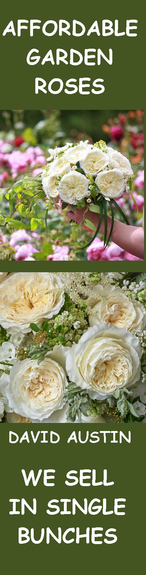 37 best White Rose Wedding Flowers images on Pinterest | Bridal ...