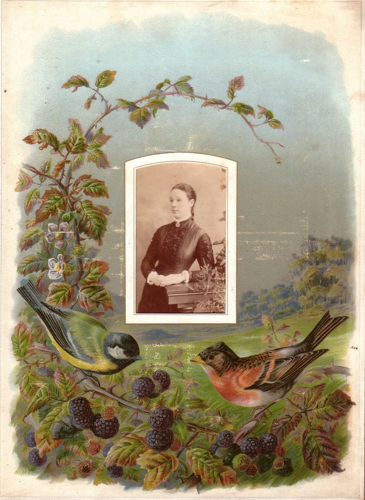 October page from a Victorian photograph album. The photograph ( carte de visite size) is of a rather pensive looking lady. The illustrated ...