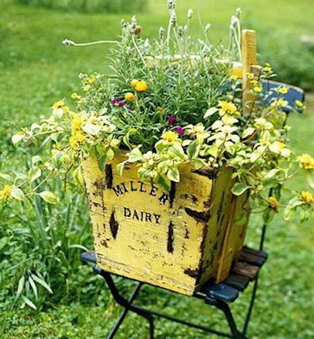A sunny yellow dairy crate holds like colored flowers. By Debbie McMurry Pretty