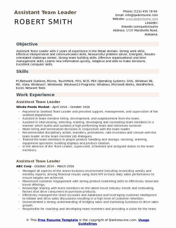 Team Lead Job Description Resume Beautiful Assistant Team Leader Resume Samples In 2020 Medical Assistant Resume Resume Skills Resume Examples
