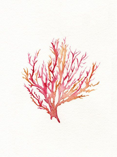 No. 3 Sea Coral  / Red / Pink / Yellow Ochre / por kellybermudez, $20.00