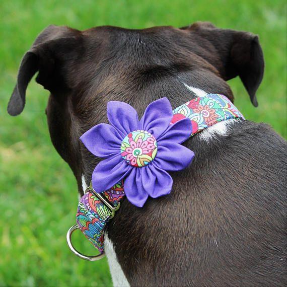 Purple dog collar flower dog collar thick dog collar wide