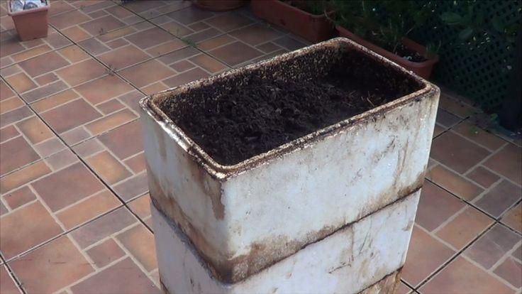 Vermicompostadora Casera. Cada huerta debe tener un proveedor de abono orgánico para sus semilleros, y más importante aún si este se encuentra dentro de la propia huerta, el primer proyecto del 201…