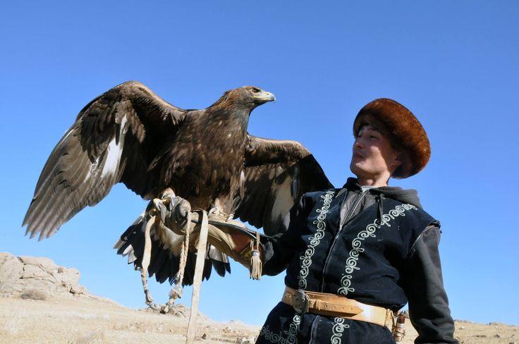 """Kırgızlarda kartalla avcılık geleneği  Kartalla avcılık geleneği Kırgız kültüründe önemli bir yere sahip. Kartal, kanatlı yırtıcı kuşlar içinde en güçlü, kudretli kuş olarak kabul edilirken, """"bürküt"""" olarak adlandırılıyor."""