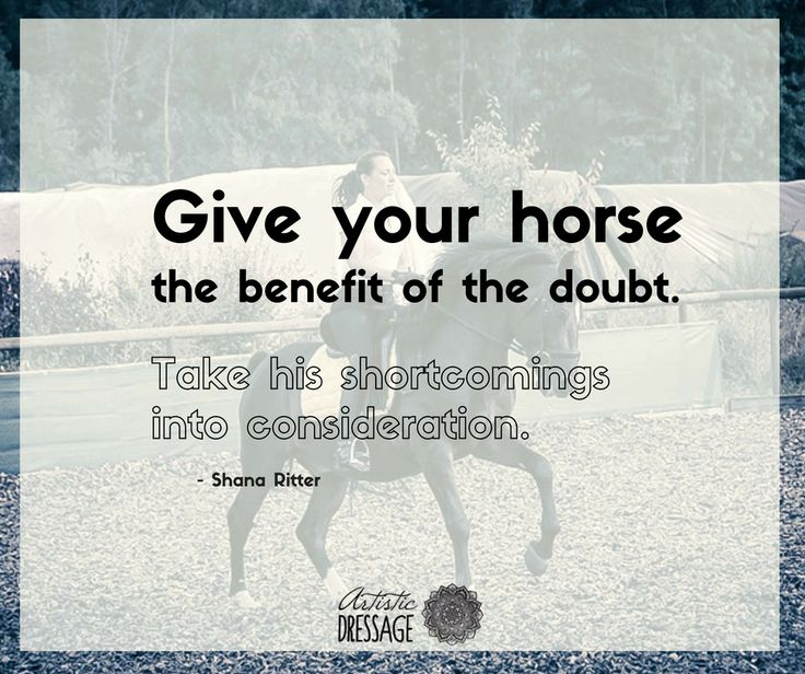 """Give your horse the benefit of the doubt. Take his shortcomings into consideration."" - Shana Ritter  artisticdressage.com"