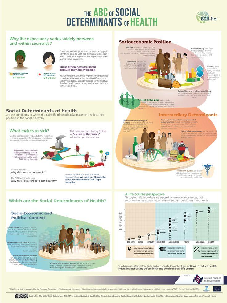 Social Determinants Best Health Infographics