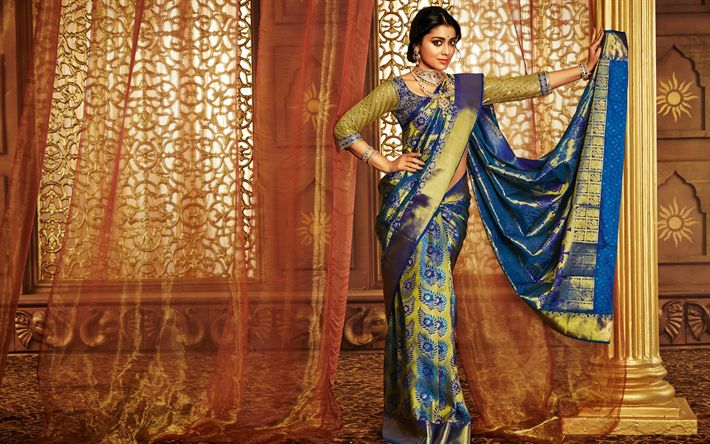 Download wallpapers Shriya Saran, Indian actress, traditional clothes, dress, sari, Indian fashion model