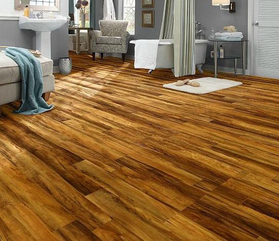 18 best room designer images on pinterest room designer for Ispiri laminate flooring