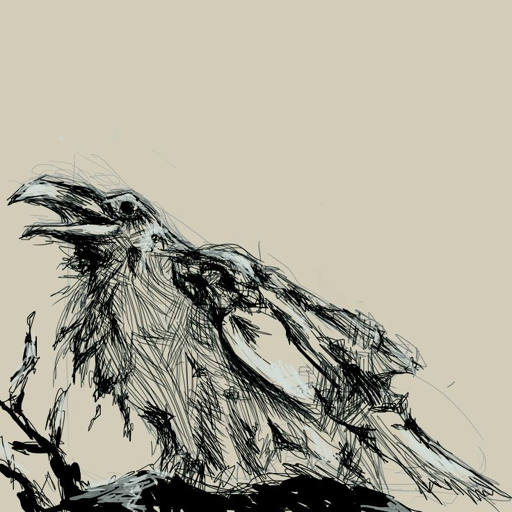 Quick Photoshop sketch of a crow.