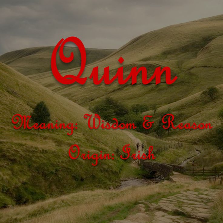 Old Irish Baby Boy Name, Classy Old Fashion Baby Boy Name, Quinn, Pines by Jules
