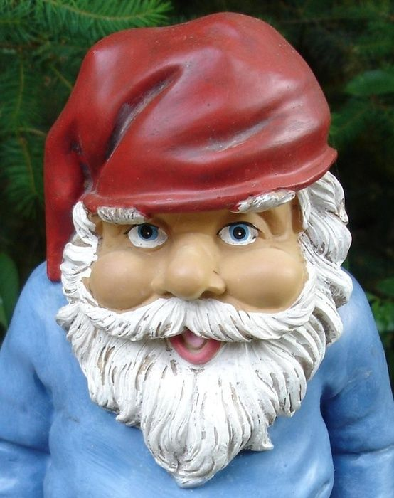 40fcec3a50ebacbe395d71e29b9bd5f4 expedia deals online travel 179 best how to survive a garden gnome attack images on pinterest