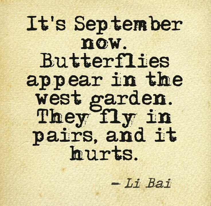 #Quote Li Bai, The River Merchant's Wife, tr. David Hinton, Samuel Fischer Guest Professor for Literature 2013 in Berlin