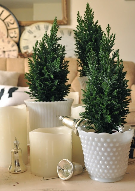 Vintage milk glass and mini trees from Trader Joes...a bow would be a nice finishing touch...maybe a light spritz of spray glitter. =)