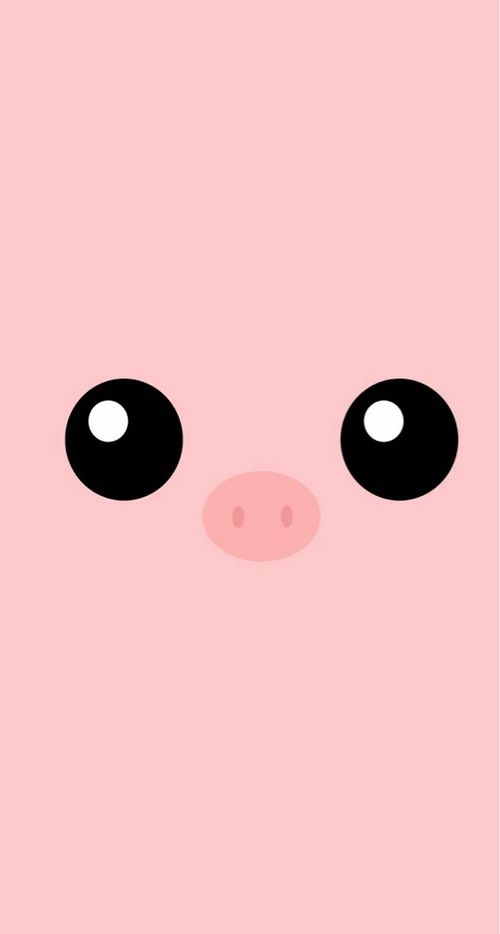#Piggy / Soo #Kawaii > Download more super cute #iPhone #Wallpapers at @prettywallpaper