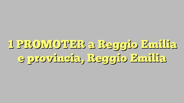 1 PROMOTER a Reggio Emilia e provincia, Reggio Emilia