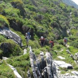 Trekking in Otter Trail, one of the worlds most exclusive hikes, 4½-day journey…