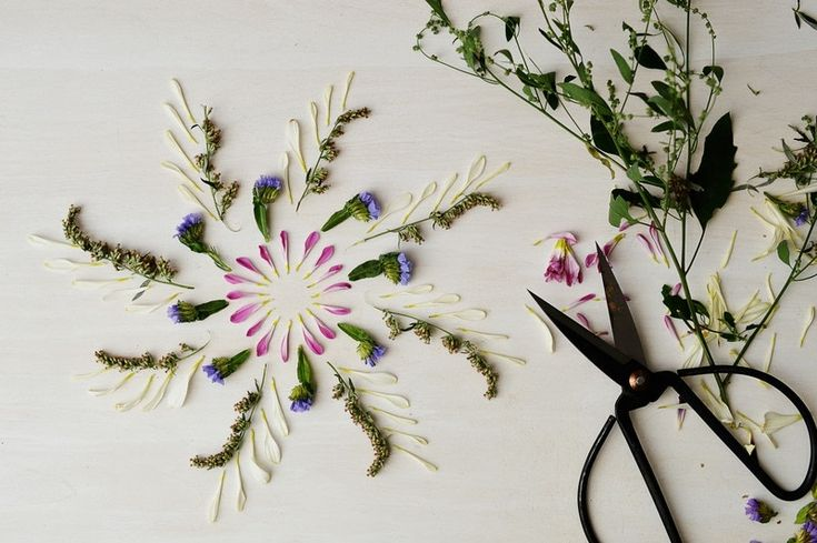 Nature Mandalas · How To Make A Piece Of Pressed Flower Art ...