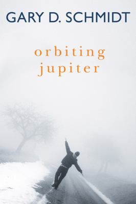 Orbiting Jupiter by Gary D. Schmidt.
