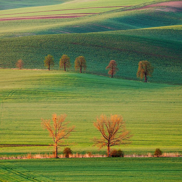 Best Hokkaido Images On Pinterest Hokkaido Japan Travel And - The mesmerising beauty of moravian fields photographed by marcin sobas