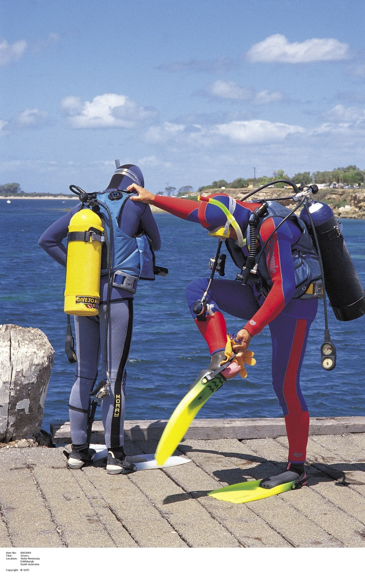 Divers getting ready at Edithburgh.  Image Source: SA Tourism Commission.