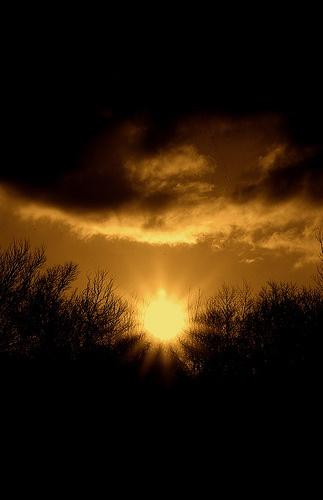 Good Morning Sunshine My Only Sunshine : Best images about good morning on pinterest free