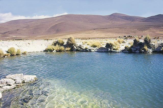 Termas de Lirima (Pica, Chile) #colchaguatours | Colchagua Tours