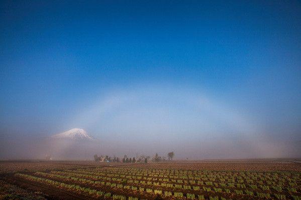富士山望む霧の中に「白虹」 アマ写真家が撮影 山梨