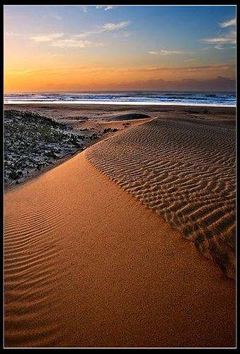 Eastern Cape of South Africa.