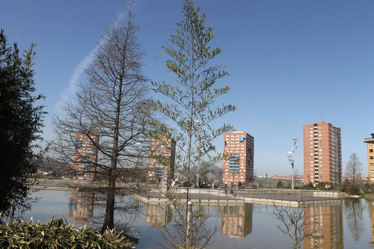 estanque, zona de esparcimiento.