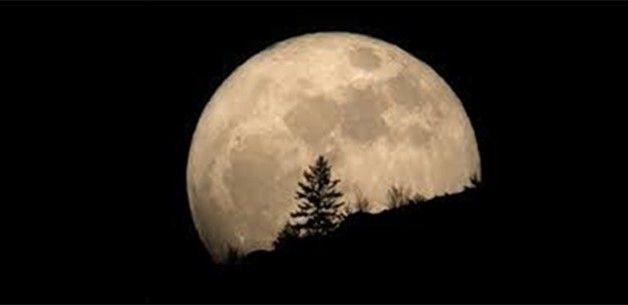4/7-Camminata con luna piena a Rivalba (Pro Natura Torino, Sentieri della Collina Torinese)