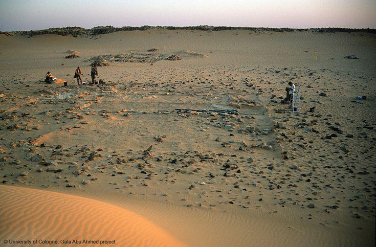 Digging inside Gala Abu Ahmed fortress in Wadi Howar, Sudan http://www.fstafrika.phil-fak.uni-koeln.de/9259.html