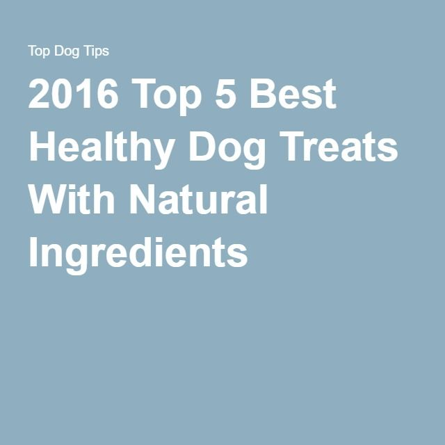 2016 Top 5 Best Healthy Dog Treats With Natural Ingredients