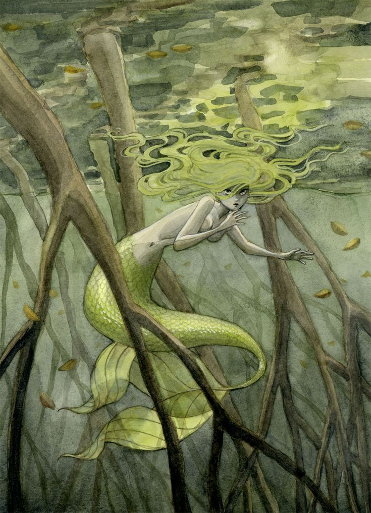 reneenault:  This week's mermaid lives in a mangrove swamp. You can get prints of all my Friday mermaids in my Etsy shop or my web shop.
