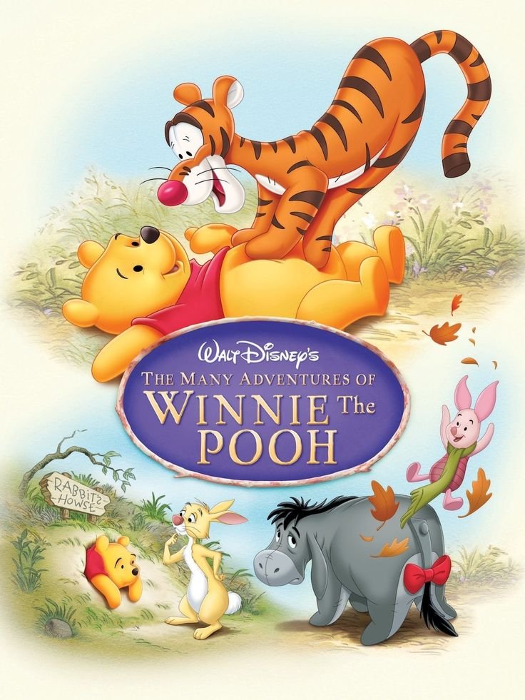 *THE MANY ADVENTURES OF WINNIE THE POOH