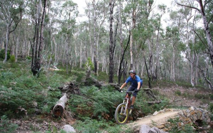 The North South Track (Mt Wellington Off Road Descent) | Mountain Bike Tasmania