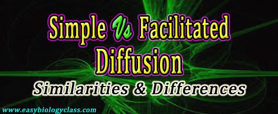 Difference between Simple and Facilitated Diffusion
