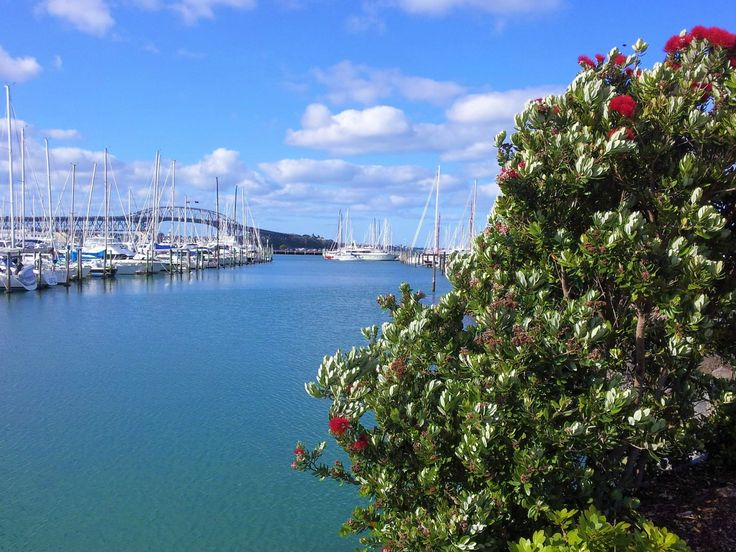 Westhaven Promenade Walk, Auckland, New Zealand (by KaVa)