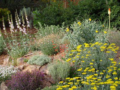 WaterWise Landscape Rock Garden Garden ideas Pinterest