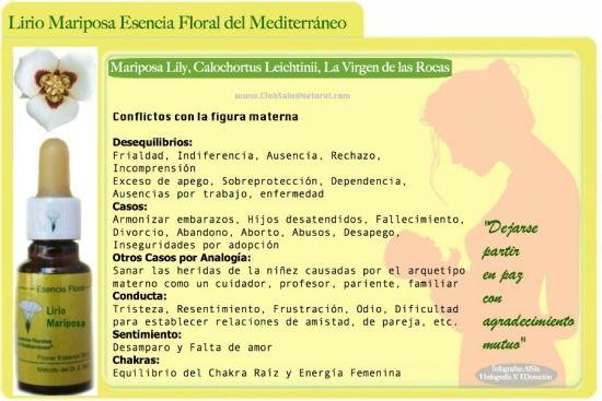 La Esencia Floral Liberadora de Conflictos con el Vínculo Materno Lirio Mariposa - Club Salud Natural