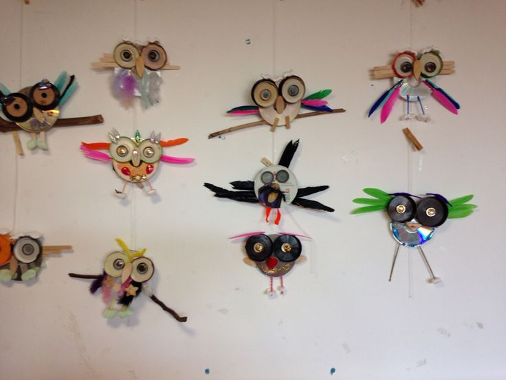 Owls of cd's-groep 7