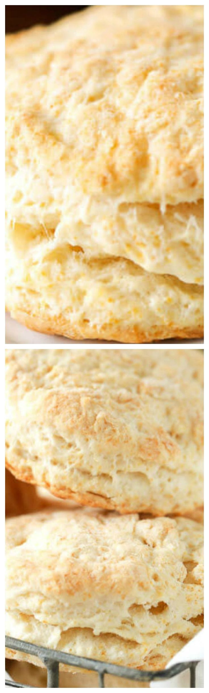 Easy Homemade Buttermilk Biscuits ~ Nothing tastes quite like layer upon layer of flaky buttery biscuits served warm out of the oven. These easy biscuits go perfectly with any meal, savory or sweet!