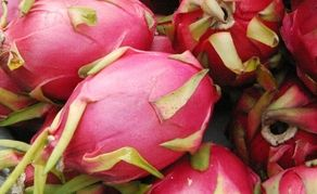 Dragon fruit, or pitaya, is a beautiful, bright, pink-skinned fruit that begins with huge dazzling cactus flowers. The skin is a thin rind usually covered in scales and the centre is made up of a purple/red, yellow or white, sweet-tasting pulp.