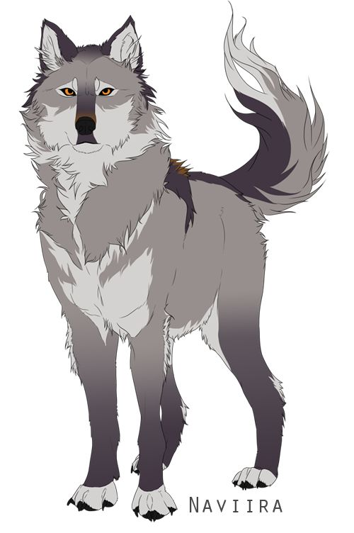 Best 25 Cartoon wolf ideas on Pinterest  How to draw wolf How
