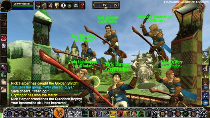 Harry Potter MMORPG  OMG I would SO play the crap out of this!