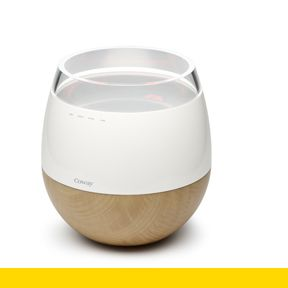 Hwaro | A heating humidifier combined with an air purifier. | Designer Team: Hun-jung Choi and Sung-wook Jung of Woongjin Coway Co. Ltd. (South Korea) | IDEA Gold 2010 | IDSA