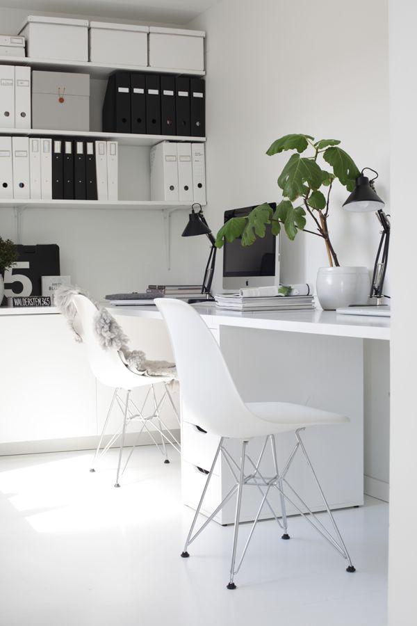elv's: workspace inspiration