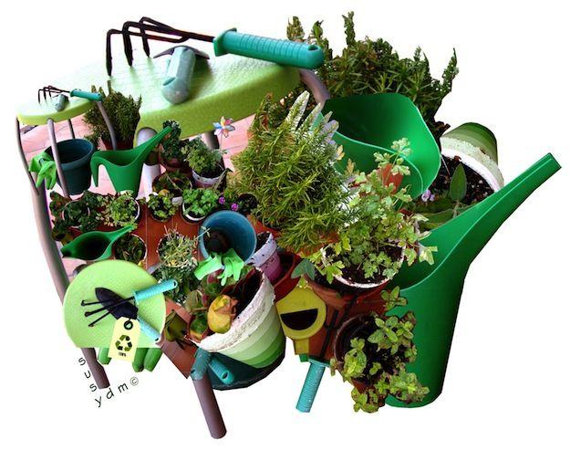 Come coltivare un orto