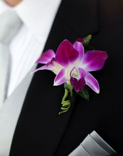 Gorgeous orchid boutonniere.  Blue orchids would be really cool also